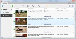MP4 Downloader Pro 3.33.15 With Activation Code Full Version Free Download